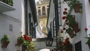 ROBINSON Club Playa Granada Ausflug in die Altstadt von Granada