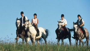 ROBINSON Club Fleesensee geführter Reitausflug mit den Pferden