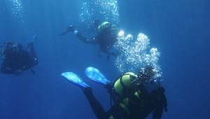 ROBINSON Club Soma Bay Tauchen im Roten Meer mit der Tauchschule