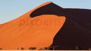 Namibia Rundreise Selbstfahrer Ansicht der bekannten Sossusvlei Düne 45