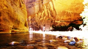 Rundreise USA Westküste Guided Tour Riverside Walk im Zion Nationalpark