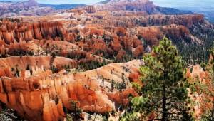 USA Reise Westküste Wunderschöner Überblick über den Bryce Canyon Nationalpark