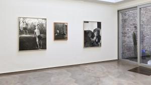 Sulzbacher Petermichl Künstler Kunst aus Österreich