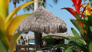 Rundreise Florida The Outrigger Beach Resort Terrasse mit Tiki-Bar