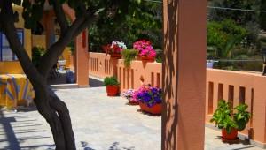 Inselhüpfen Griechenland Amphitrite Hotel Terrasse Baum