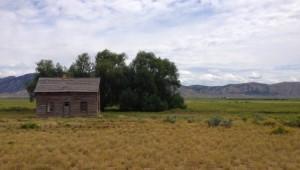 Rundreise Westküste USA - Landschaft Torrey