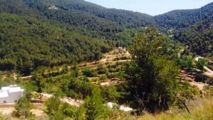 Reisebericht Ibiza Natur