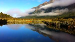 Reisebericht Neuseeland - Milford Sound Fjord
