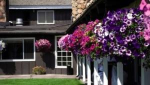 Busrundreise USA Westen - Virginian Lodge Jackson Garten