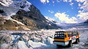 Busrundreise USA Westen - Columbia Icefield Glacier - Tourism Jasper