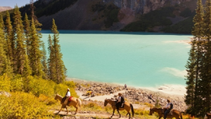 Busrundreise-USA-Lake-Louise-Ausblick-Banff-Lake-Louise-Tourism-Paul-Zizka-1