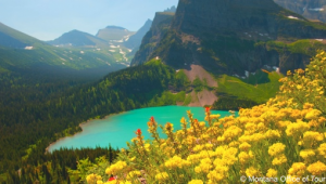 Busrundreise-USA-Westen-Glacier-Nationalpark-Montana-Office-of-Tourism-1