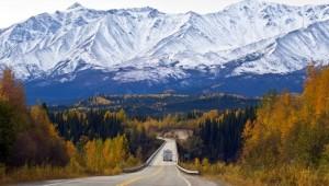 Yukon & Alaska Rundreise - Alaska Highway near Tok - State of Alaska - Roland Jung