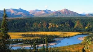 Yukon & Alaska Rundreise - Alaska Scenery1 - State of Alaska - Dirk Rohrbach