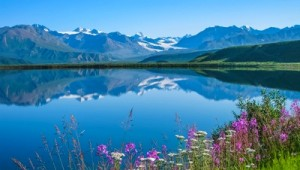Yukon & Alaska Rundreise - Tanana Valley