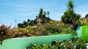 Kreta Rundreise - Hotel Aris Paleochora Garten